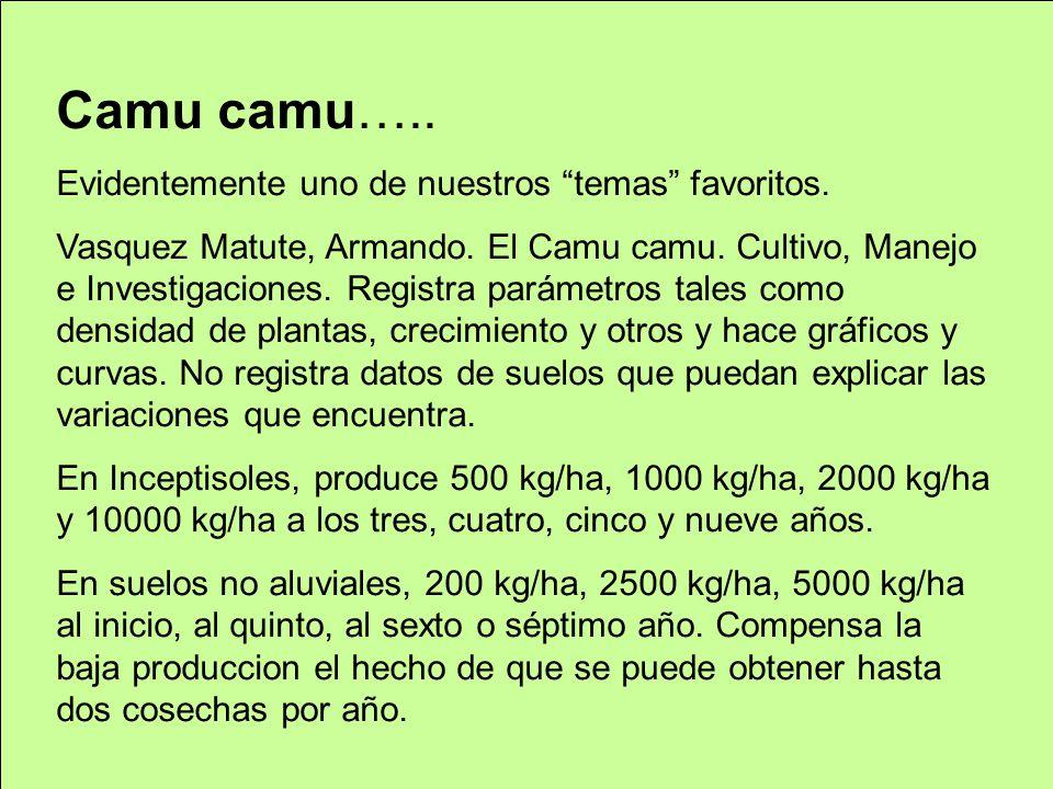 Camu camu….. Evidentemente uno de nuestros temas favoritos. Vasquez Matute, Armando. El Camu camu. Cultivo, Manejo e Investigaciones. Registra parámet