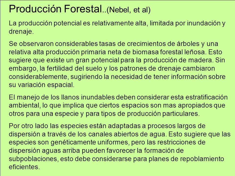 Producción Forestal..(Nebel, et al) La producción potencial es relativamente alta, limitada por inundación y drenaje. Se observaron considerables tasa