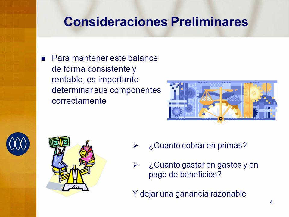 4 Consideraciones Preliminares Para mantener este balance de forma consistente y rentable, es importante determinar sus componentes correctamente ¿Cua