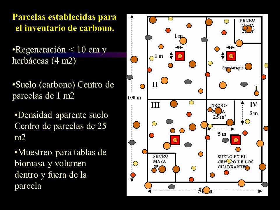 Parcelas establecidas para el inventario de carbono. Regeneración < 10 cm y herbáceas (4 m2) Suelo (carbono) Centro de parcelas de 1 m2 Densidad apare