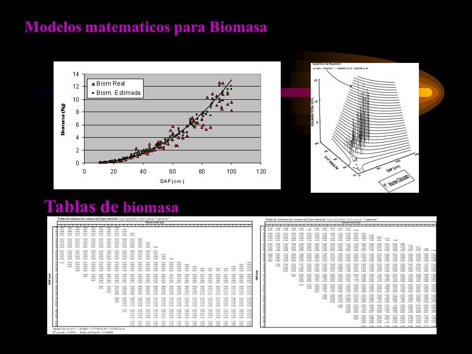 Tablas de biomasa Modelos matematicos para Biomasa