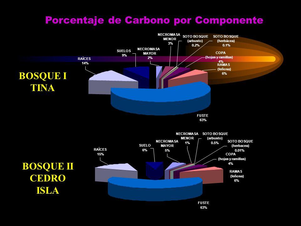 NECROMASA MAYOR 5% Porcentaje de Carbono por Componente NECROMASA MAYOR 2% SUELOS 9% NECROMASA MENOR 3% SOTO BOSQUE (arbusto) 0.2% RAÍCES 14% SOTO BOS
