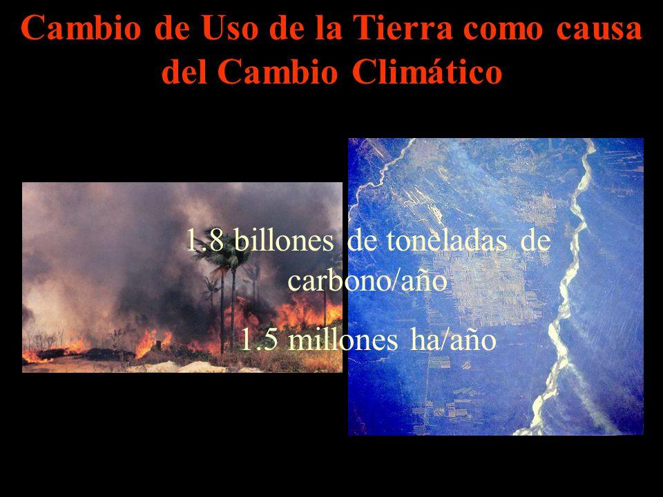 Cambio de Uso de la Tierra como causa del Cambio Climático 1.8 billones de toneladas de carbono/año 1.5 millones ha/año