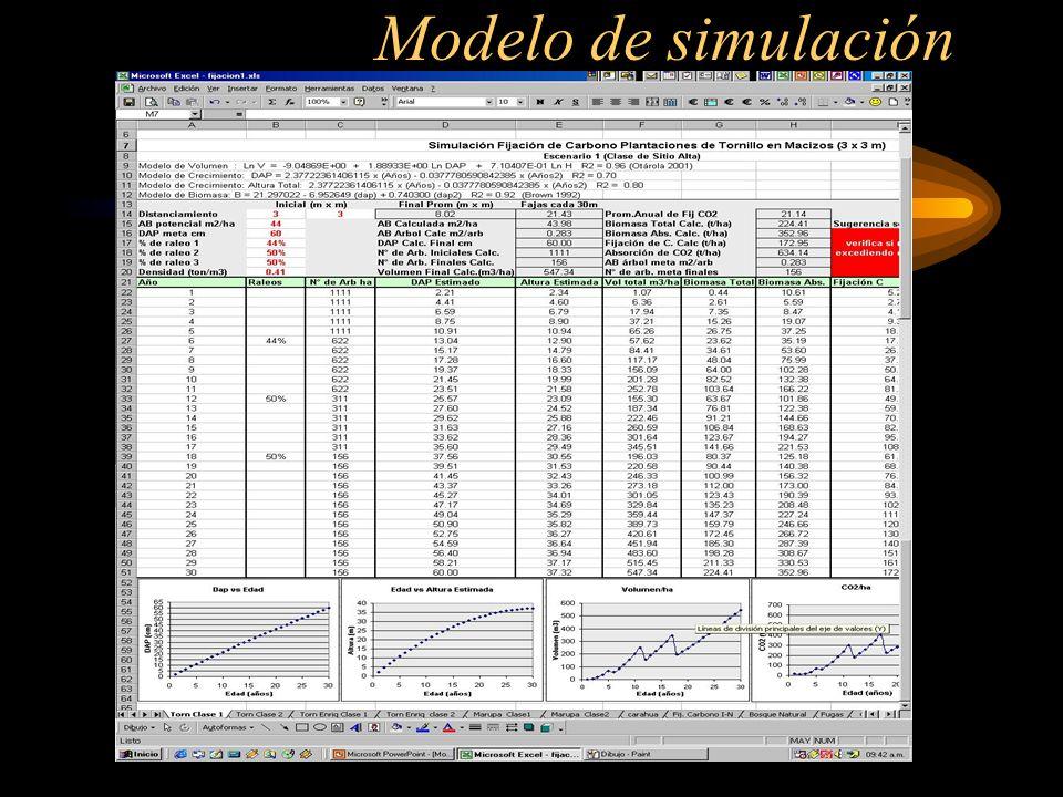 Modelo de simulación