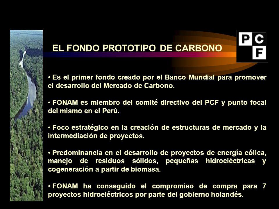 Es el primer fondo creado por el Banco Mundial para promover el desarrollo del Mercado de Carbono. FONAM es miembro del comité directivo del PCF y pun