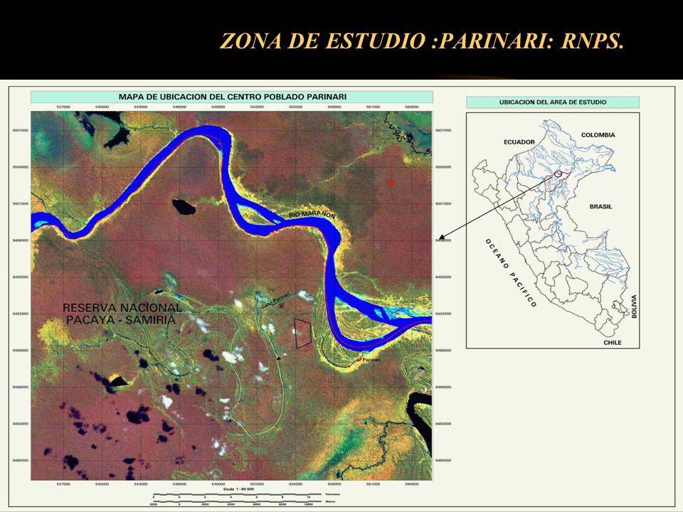 ZONA DE ESTUDIO :PARINARI: RNPS.