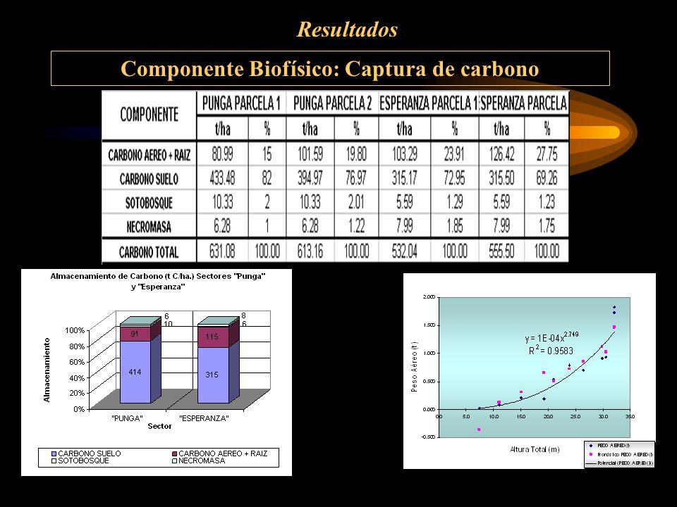 Resultados Componente Biofísico: Captura de carbono