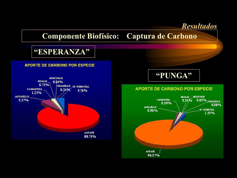 Resultados Componente Biofísico: Captura de Carbono PUNGA ESPERANZA
