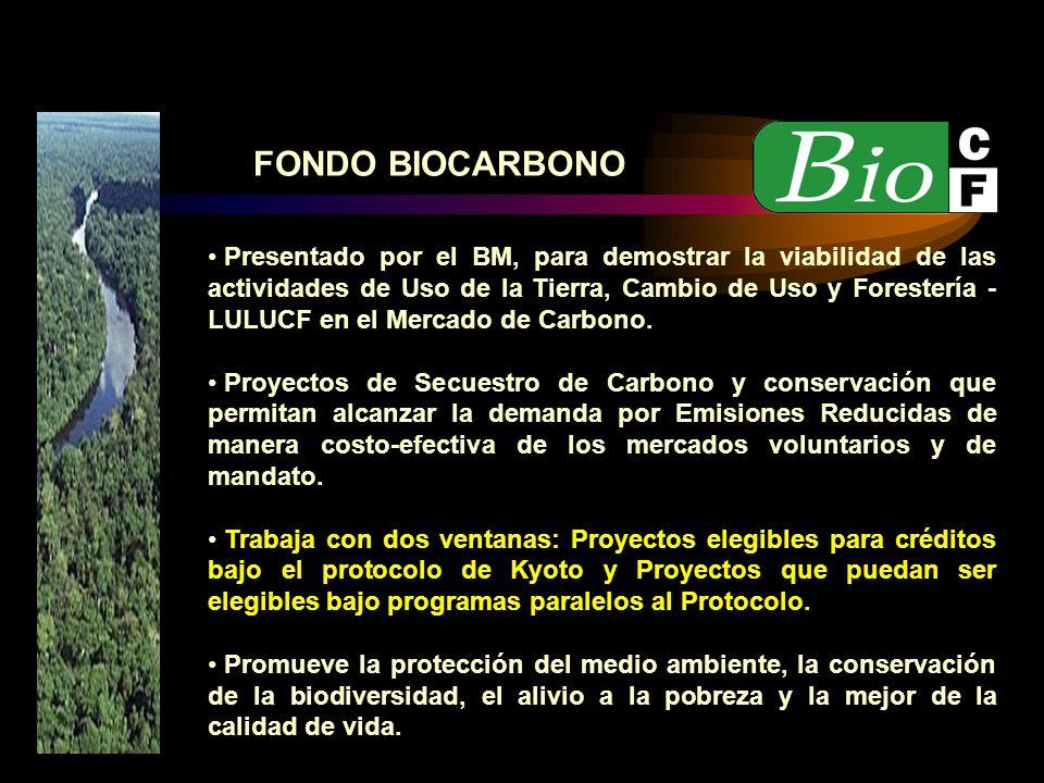 Presentado por el BM, para demostrar la viabilidad de las actividades de Uso de la Tierra, Cambio de Uso y Forestería - LULUCF en el Mercado de Carbon