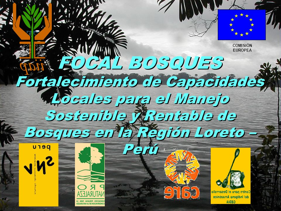 FOCAL BOSQUES Fortalecimiento de Capacidades Locales para el Manejo Sostenible y Rentable de Bosques en la Región Loreto – Perú COMISIÓN EUROPEA