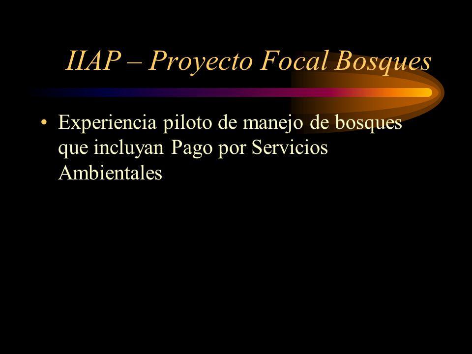 IIAP – Proyecto Focal Bosques Experiencia piloto de manejo de bosques que incluyan Pago por Servicios Ambientales