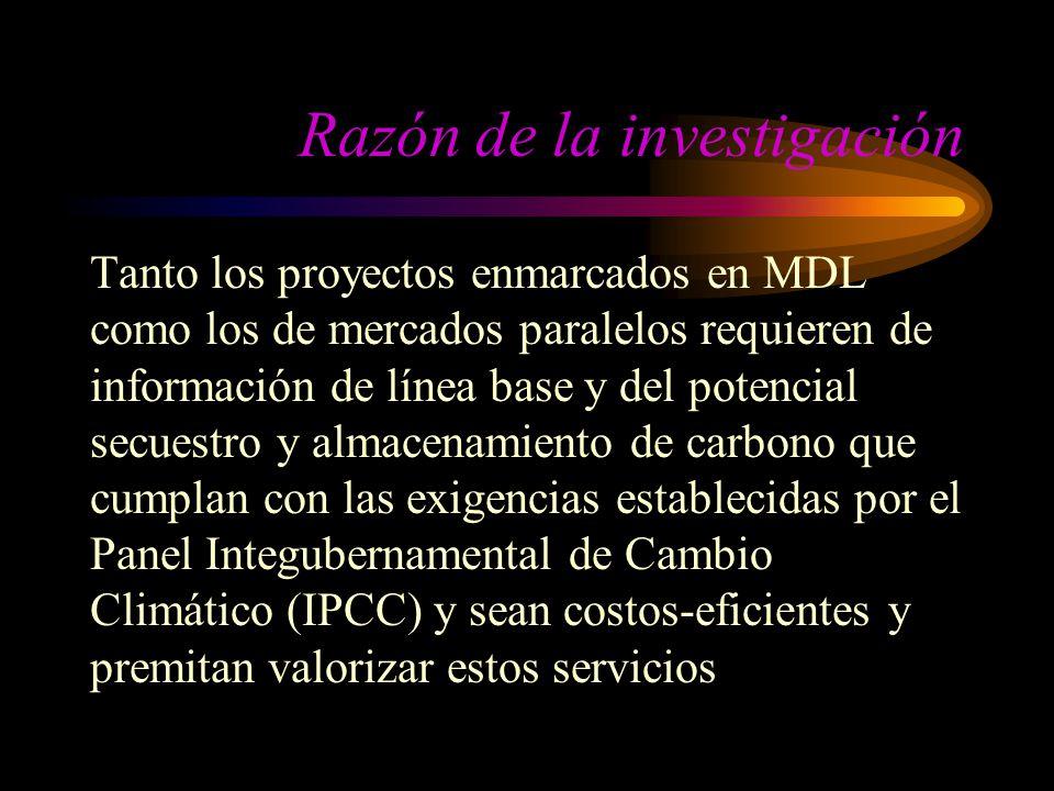 Razón de la investigación Tanto los proyectos enmarcados en MDL como los de mercados paralelos requieren de información de línea base y del potencial