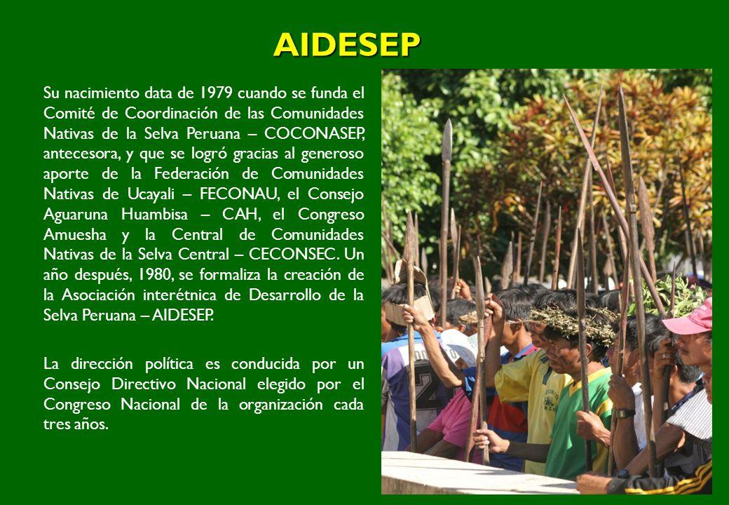 AIDESEP Su nacimiento data de 1979 cuando se funda el Comité de Coordinación de las Comunidades Nativas de la Selva Peruana – COCONASEP, antecesora, y