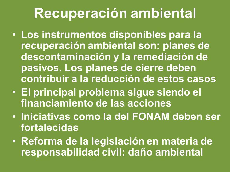 Recuperación ambiental Los instrumentos disponibles para la recuperación ambiental son: planes de descontaminación y la remediación de pasivos.