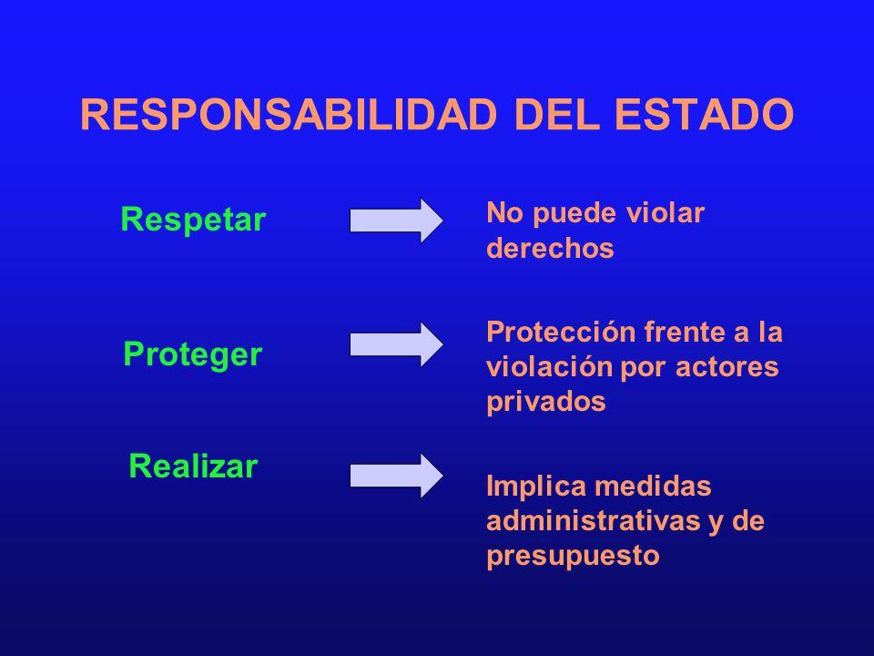 RESPONSABILIDAD DEL ESTADO Respetar Proteger Realizar No puede violar derechos Protección frente a la violación por actores privados Implica medidas a