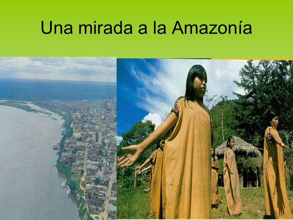 Una mirada a la Amazonía
