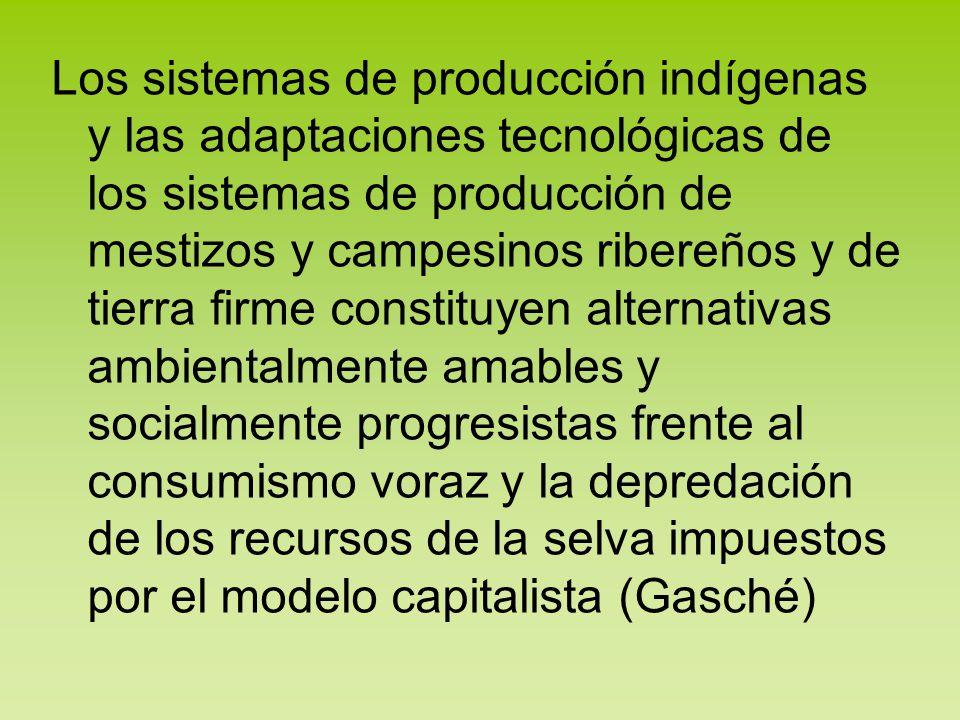 Los sistemas de producción indígenas y las adaptaciones tecnológicas de los sistemas de producción de mestizos y campesinos ribereños y de tierra firm