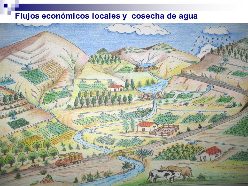 Flujos económicos locales y cosecha de agua