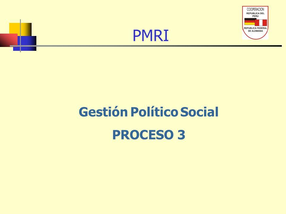 Gestión Político Social PROCESO 3 PMRI