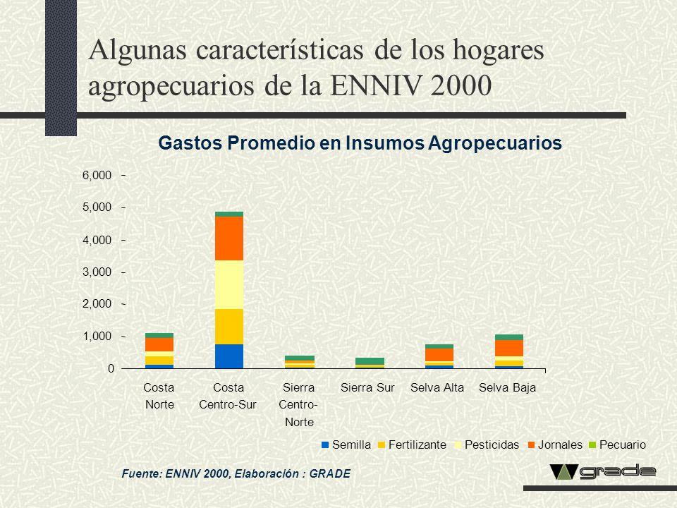 Algunas características de los hogares agropecuarios de la ENNIV 2000 Fuente: ENNIV 2000, Elaboración : GRADE Gastos Promedio en Insumos Agropecuarios