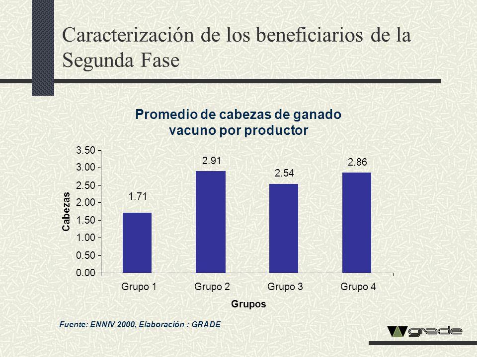 Caracterización de los beneficiarios de la Segunda Fase Promedio de cabezas de ganado vacuno por productor Fuente: ENNIV 2000, Elaboración : GRADE 2.9