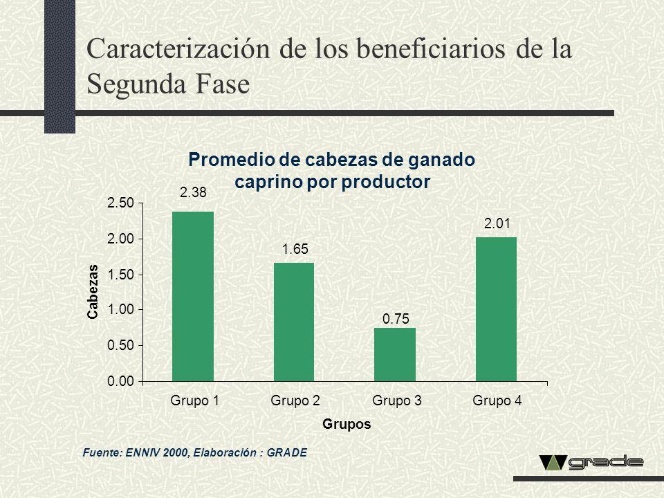 Caracterización de los beneficiarios de la Segunda Fase Promedio de cabezas de ganado caprino por productor Fuente: ENNIV 2000, Elaboración : GRADE 2.