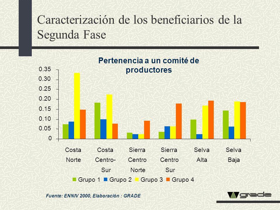Caracterización de los beneficiarios de la Segunda Fase Fuente: ENNIV 2000, Elaboración : GRADE Pertenencia a un comité de productores 0 0.05 0.10 0.1