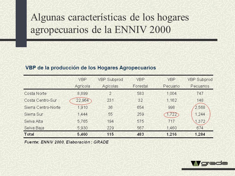 Algunas características de los hogares agropecuarios de la ENNIV 2000 VBP de la producción de los Hogares Agropecuarios