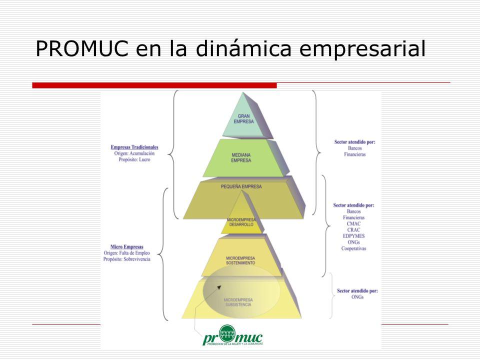 PROMUC en la dinámica empresarial