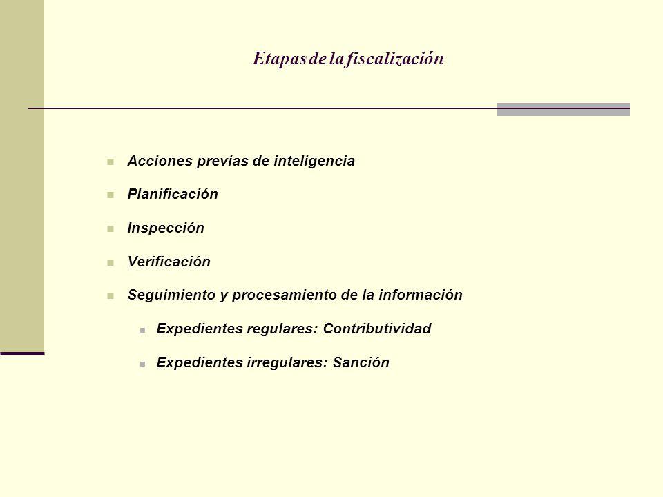 Etapas de la fiscalización Acciones previas de inteligencia Planificación Inspección Verificación Seguimiento y procesamiento de la información Expedi