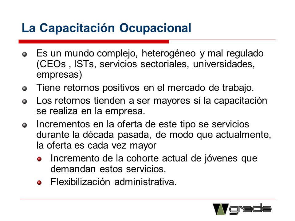 La Capacitación Ocupacional Es un mundo complejo, heterogéneo y mal regulado (CEOs, ISTs, servicios sectoriales, universidades, empresas) Tiene retorn