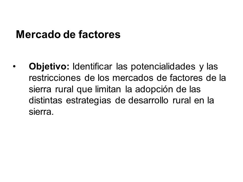 Mercado de factores Encontramos los hogares rurales de la sierra usan algún mercado de factores, pero muy pocos usan varios mercados de factores (insumos, mercado laboral, tierra, crédito, asistencia técnica): Menos del 9% de los hogares rurales contrató asistencia técnica.