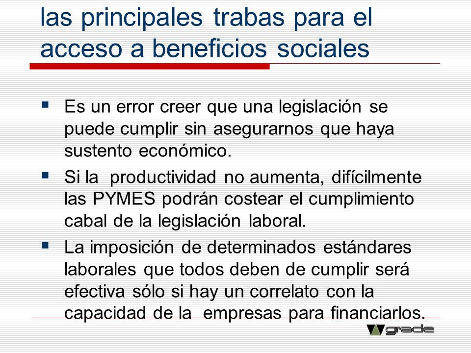 La baja productividad es una de las principales trabas para el acceso a beneficios sociales Es un error creer que una legislación se puede cumplir sin