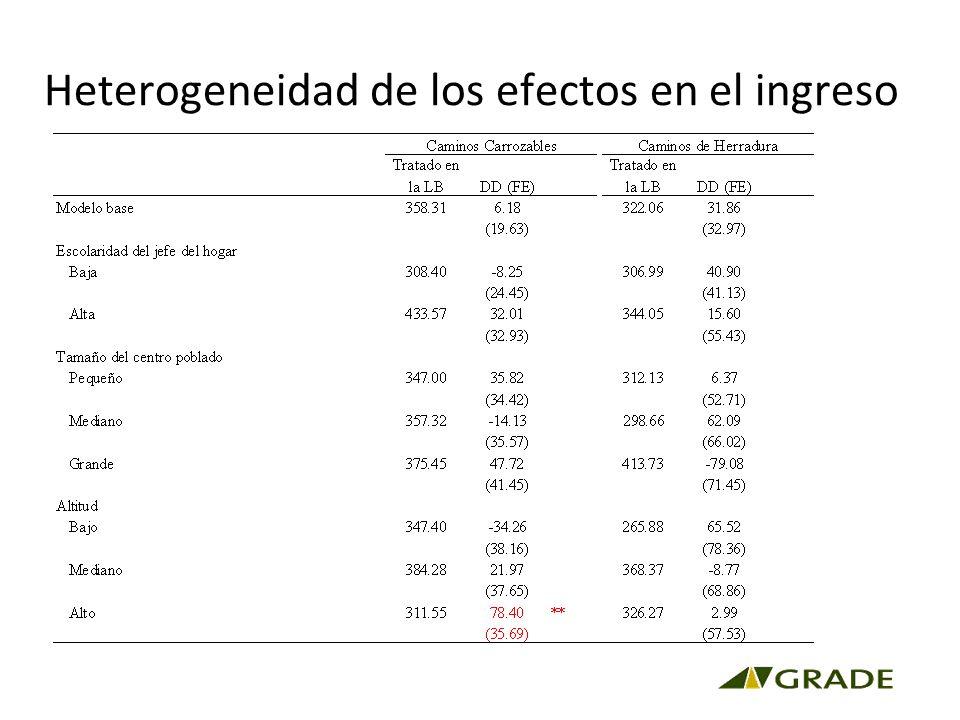 Heterogeneidad de los efectos en el ingreso