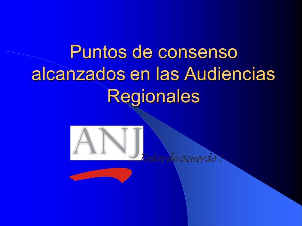 Puntos de consenso alcanzados en las Audiencias Regionales