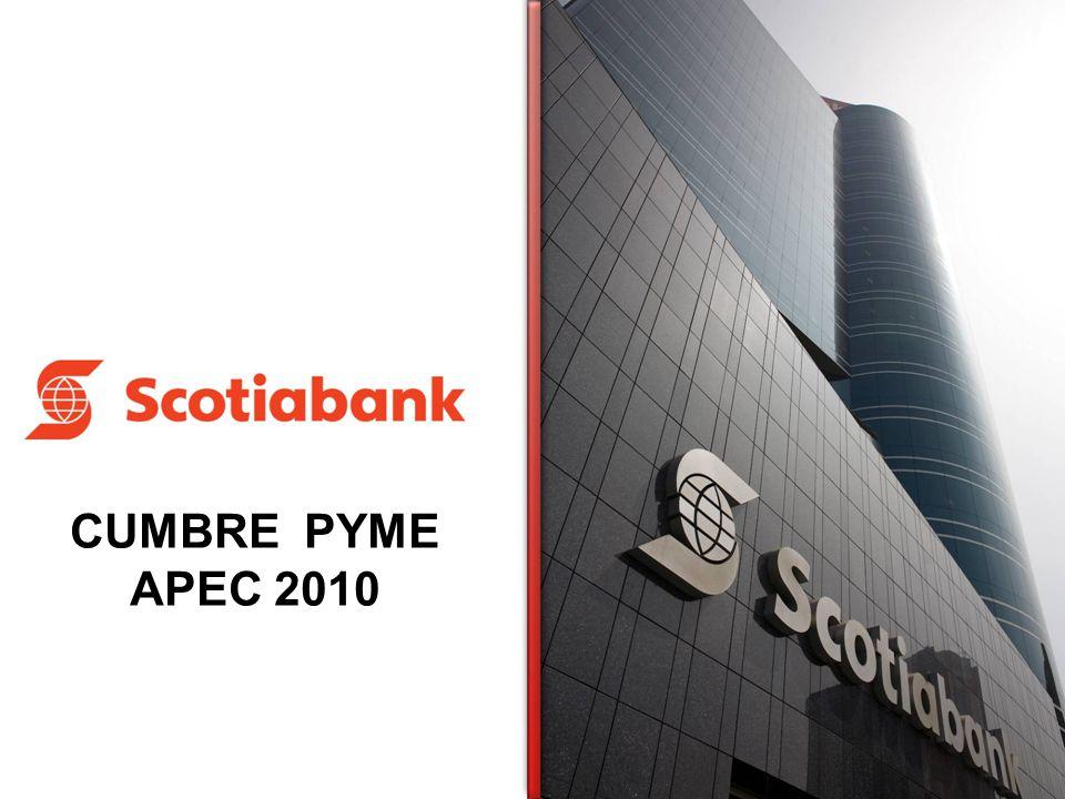 CUMBRE PYME APEC 2010