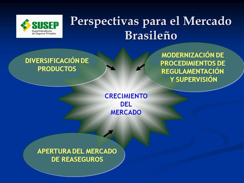 Perspectivas para el Mercado Brasileño CRECIMIENTO DEL MERCADO APERTURA DEL MERCADO DE REASEGUROS DIVERSIFICACIÓN DE PRODUCTOS MODERNIZACIÓN DE PROCEDIMIENTOS DE REGULAMENTACIÓN Y SUPERVISIÓN