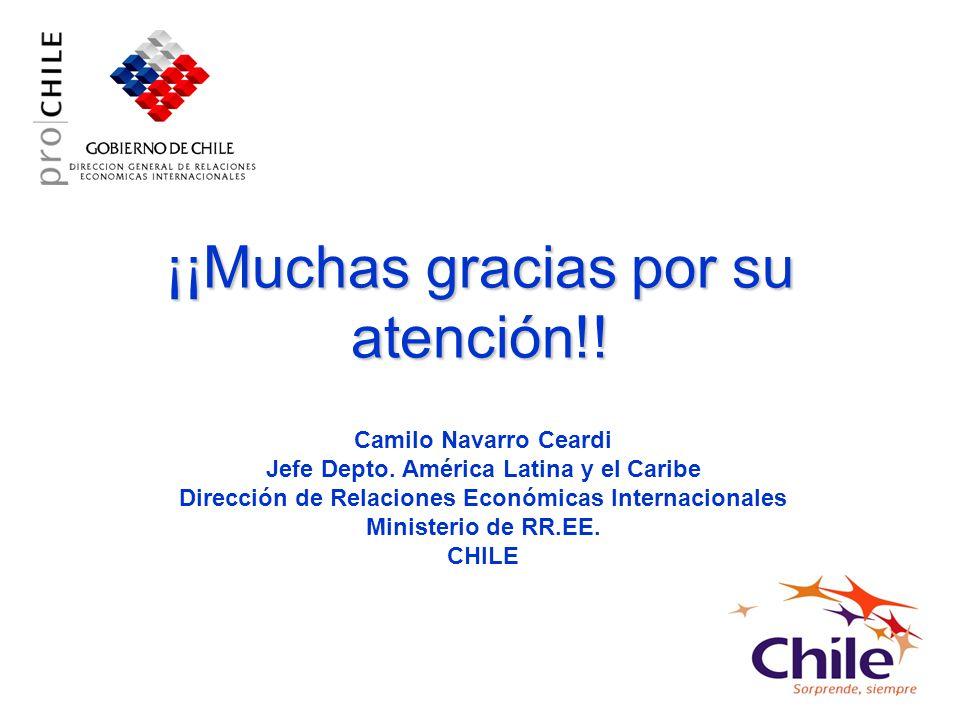 ¡¡Muchas gracias por su atención!.Camilo Navarro Ceardi Jefe Depto.