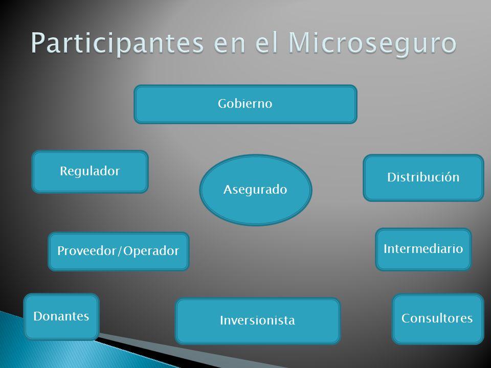 Asegurado Proveedor/Operador Gobierno Regulador Distribución Inversionista Intermediario Donantes Consultores