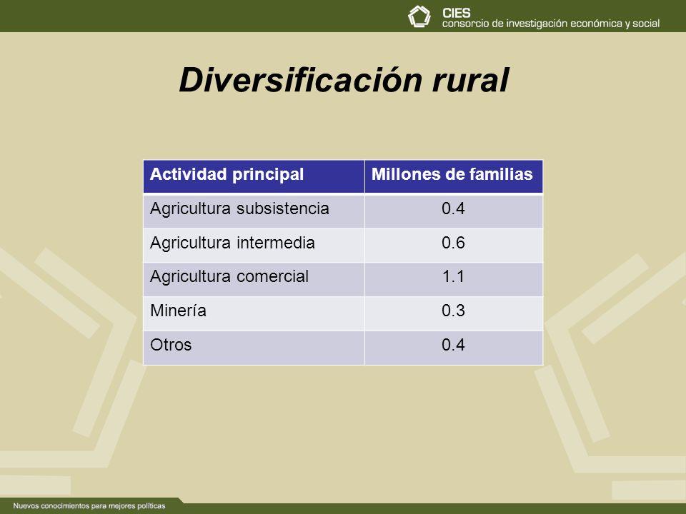 Diversificación rural Actividad principalMillones de familias Agricultura subsistencia0.4 Agricultura intermedia0.6 Agricultura comercial1.1 Minería0.3 Otros0.4