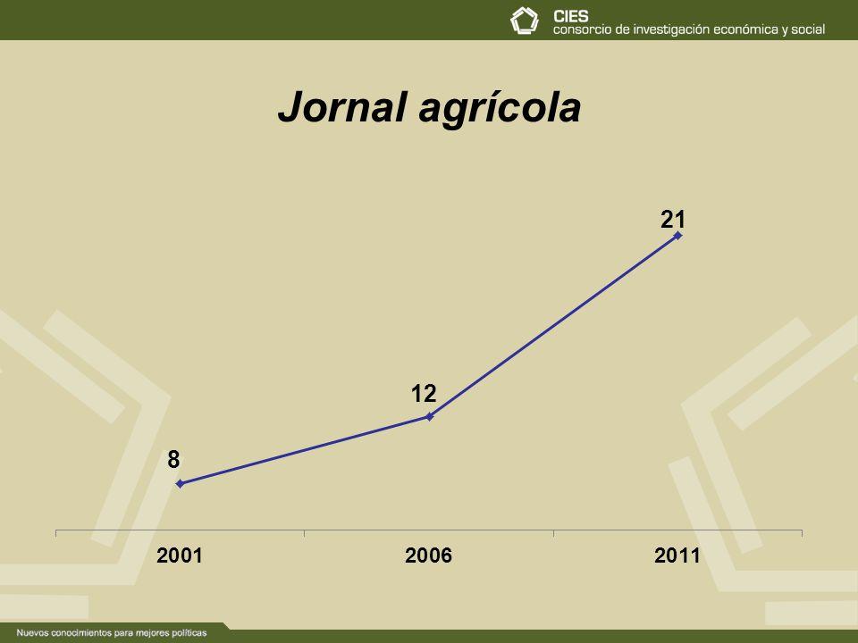 Jornal agrícola