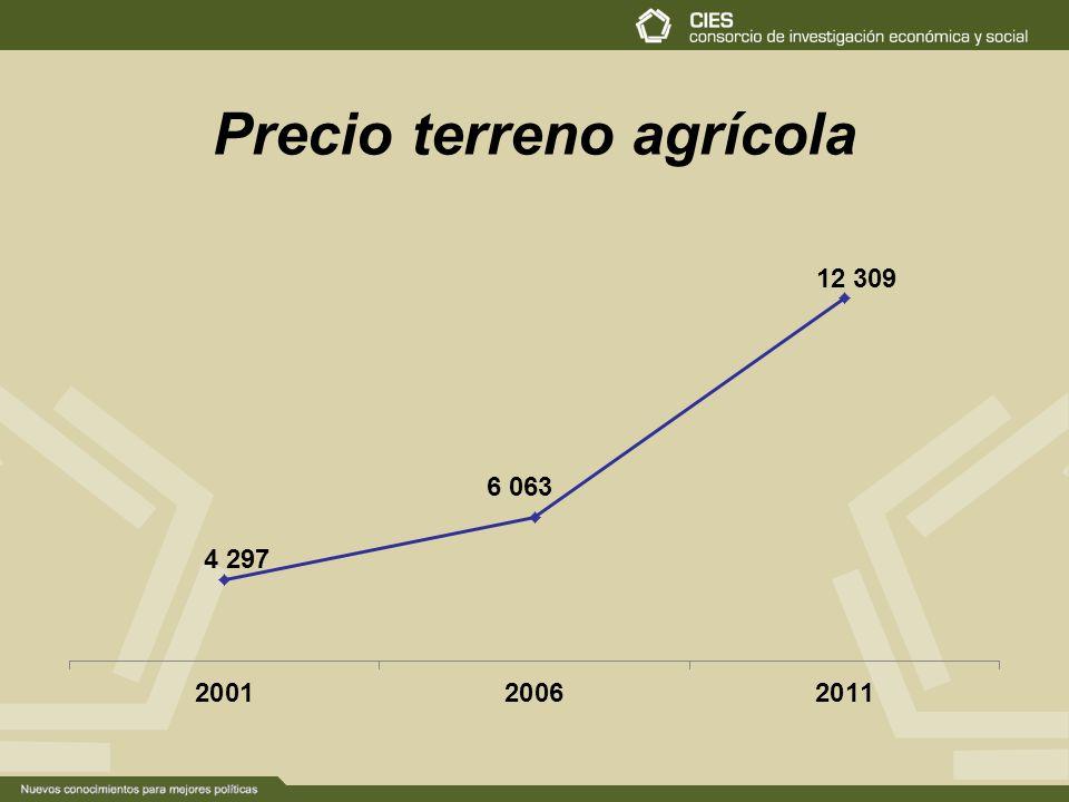 Precio terreno agrícola