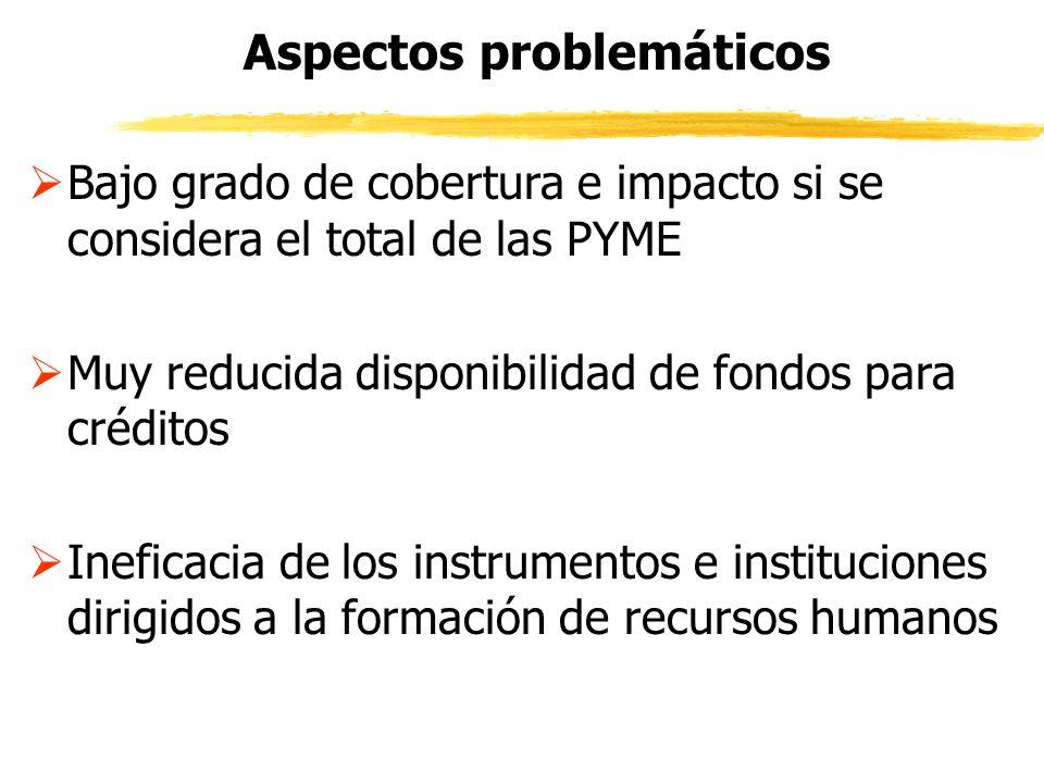 Aspectos problemáticos Bajo grado de cobertura e impacto si se considera el total de las PYME Muy reducida disponibilidad de fondos para créditos Inef