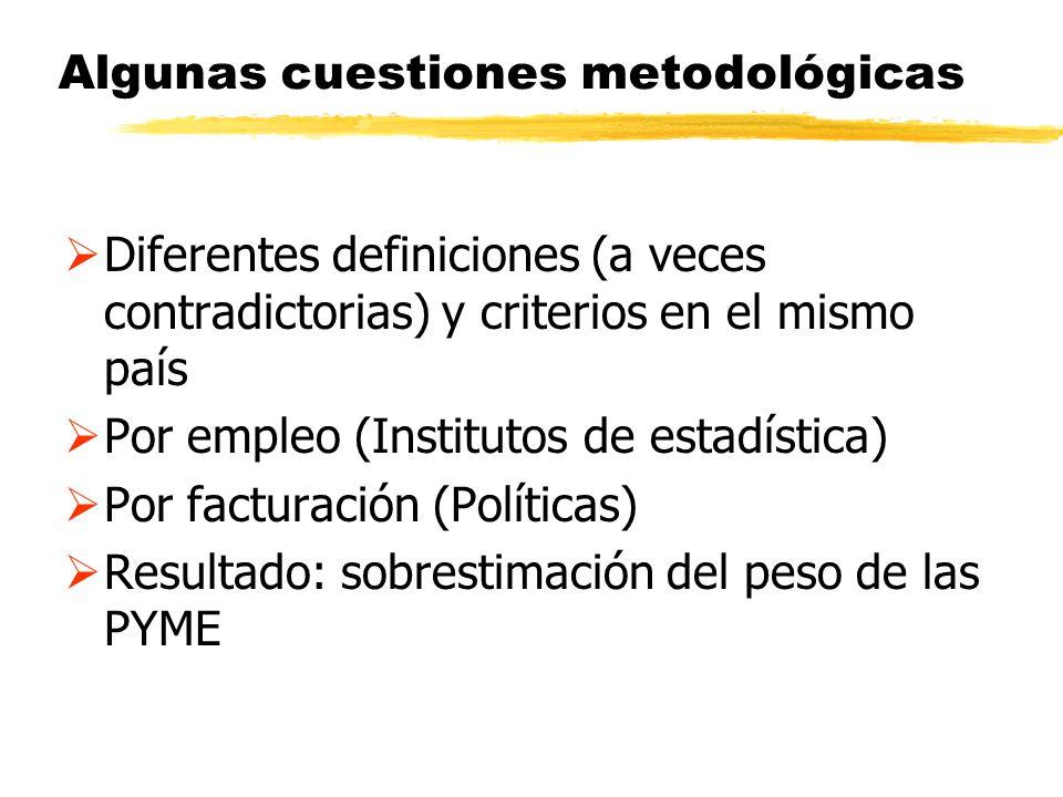 Algunas cuestiones metodológicas Diferentes definiciones (a veces contradictorias) y criterios en el mismo país Por empleo (Institutos de estadística)