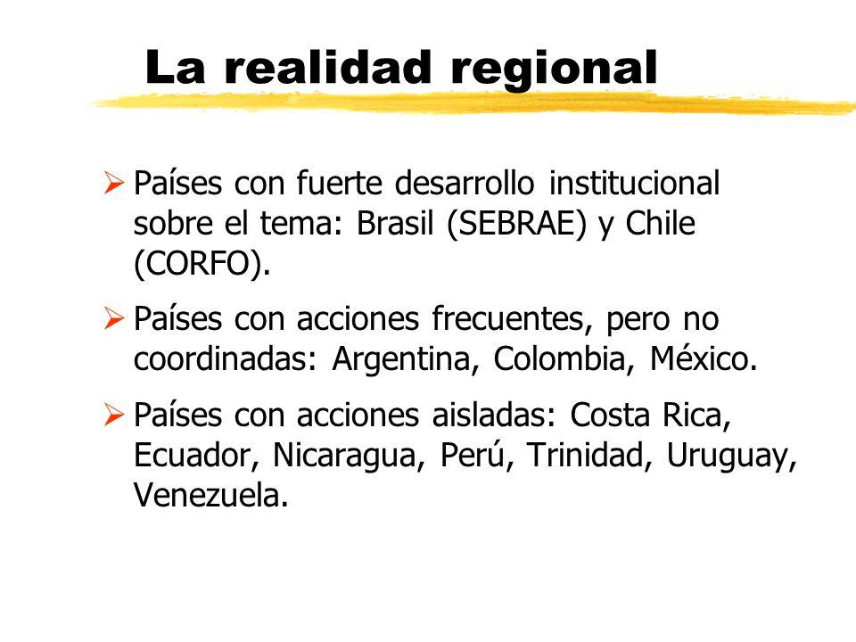 La realidad regional Países con fuerte desarrollo institucional sobre el tema: Brasil (SEBRAE) y Chile (CORFO). Países con acciones frecuentes, pero n