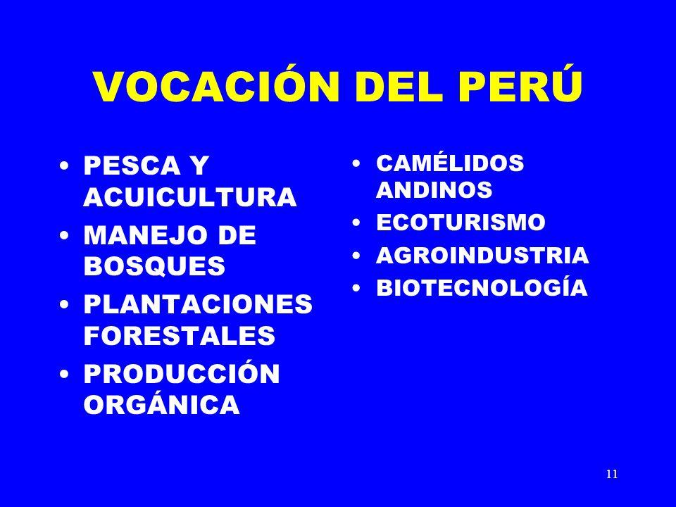 11 VOCACIÓN DEL PERÚ PESCA Y ACUICULTURA MANEJO DE BOSQUES PLANTACIONES FORESTALES PRODUCCIÓN ORGÁNICA CAMÉLIDOS ANDINOS ECOTURISMO AGROINDUSTRIA BIOT