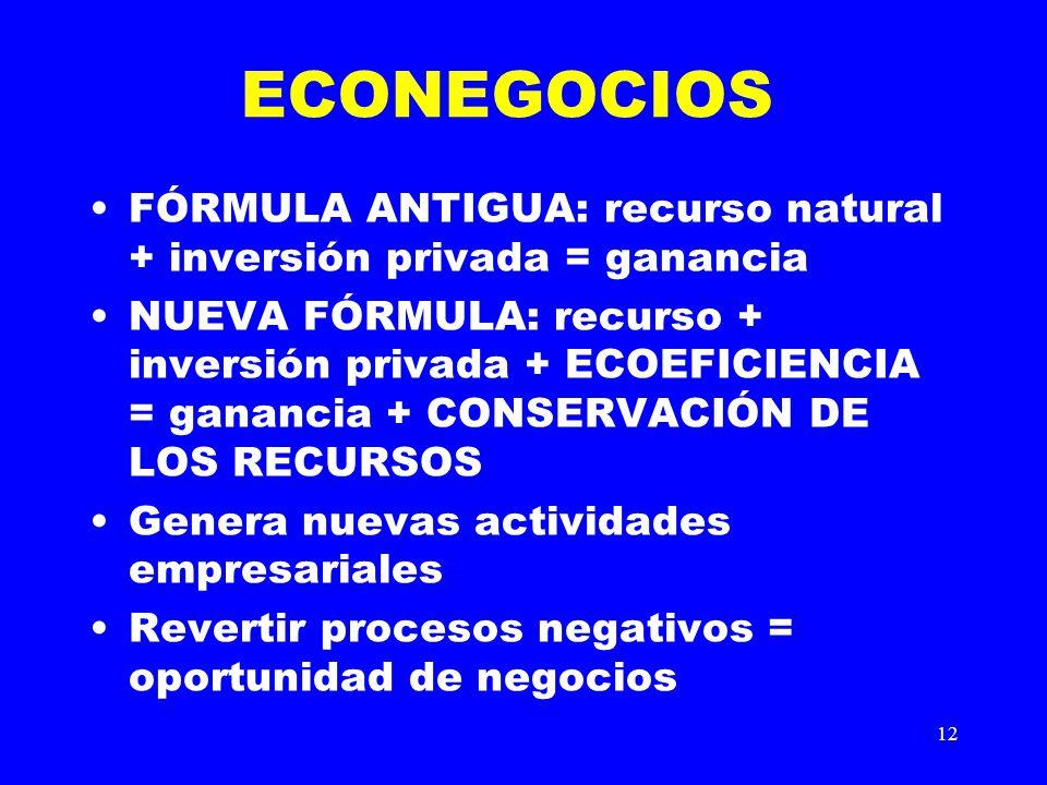 12 ECONEGOCIOS FÓRMULA ANTIGUA: recurso natural + inversión privada = ganancia NUEVA FÓRMULA: recurso + inversión privada + ECOEFICIENCIA = ganancia +