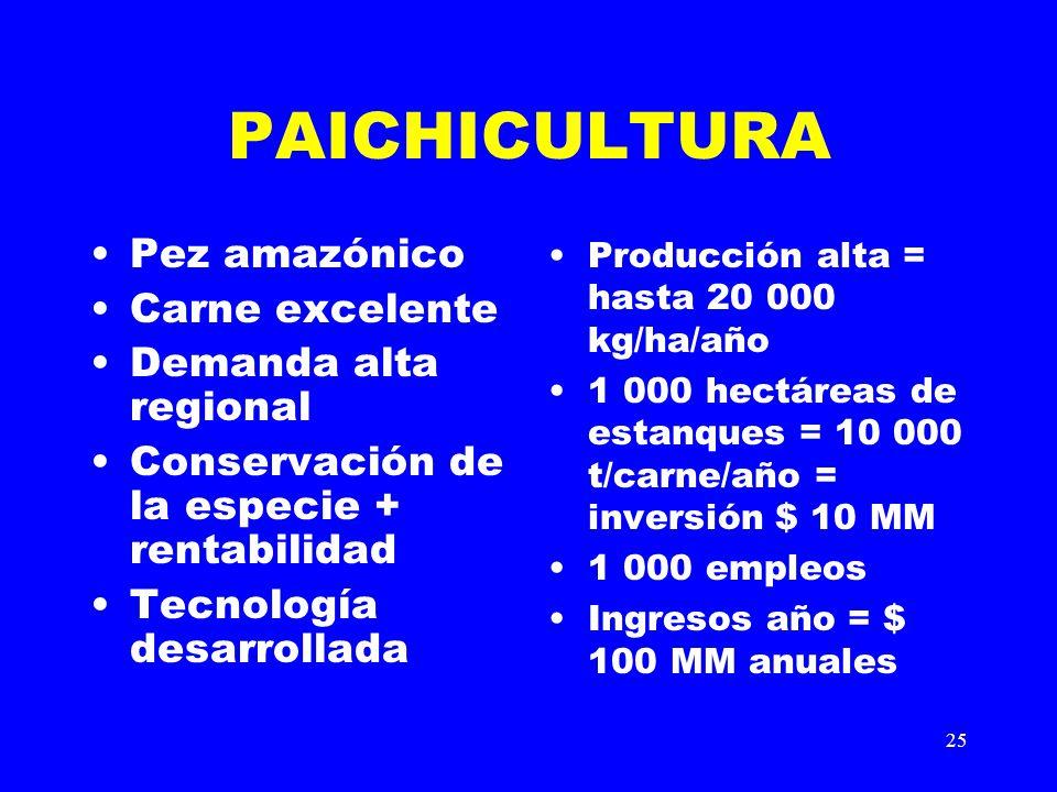 25 PAICHICULTURA Pez amazónico Carne excelente Demanda alta regional Conservación de la especie + rentabilidad Tecnología desarrollada Producción alta