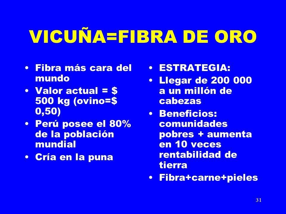 31 VICUÑA=FIBRA DE ORO Fibra más cara del mundo Valor actual = $ 500 kg (ovino=$ 0,50) Perú posee el 80% de la población mundial Cría en la puna ESTRA