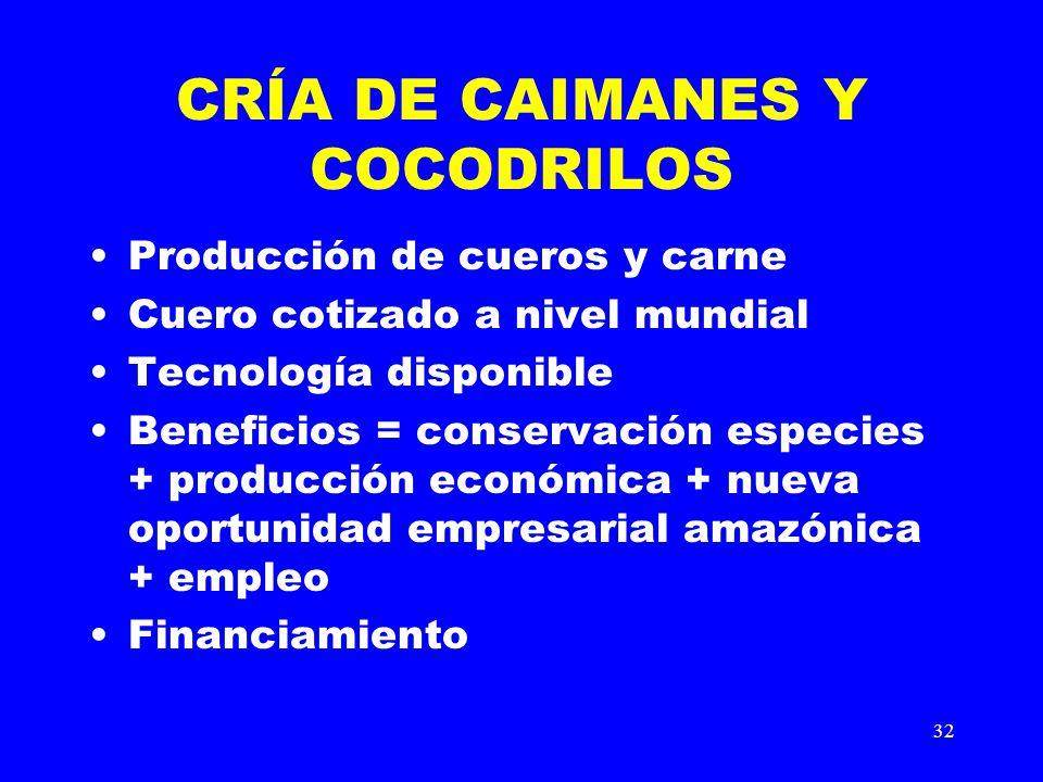 32 CRÍA DE CAIMANES Y COCODRILOS Producción de cueros y carne Cuero cotizado a nivel mundial Tecnología disponible Beneficios = conservación especies